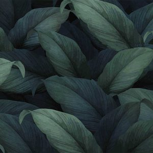 טפט טרופי, עלים טרופיים, ירוק